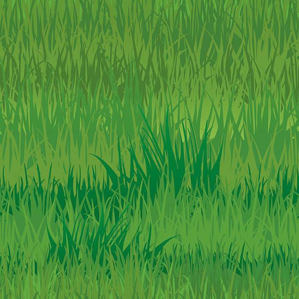 ilustrações de stock, clip art, desenhos animados e ícones de sem costura padrão de textura de relva - lian empty
