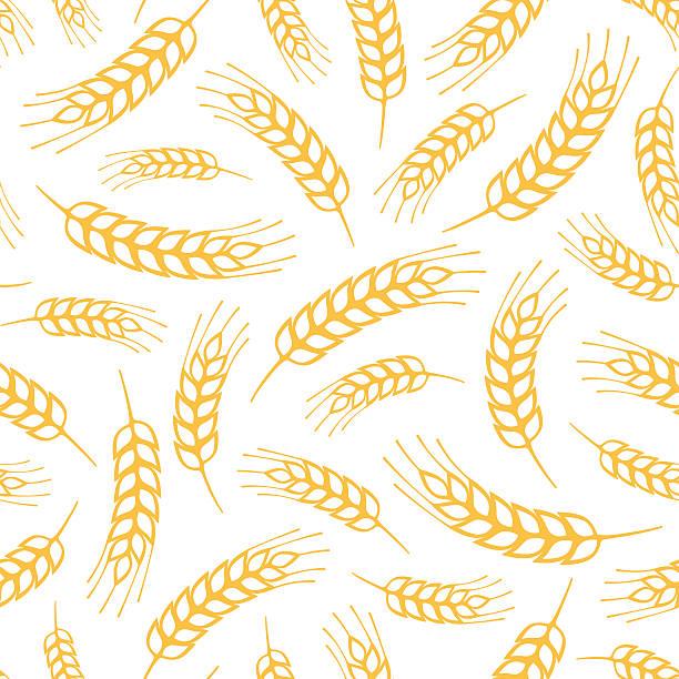 seamless pattern - buğday stock illustrations