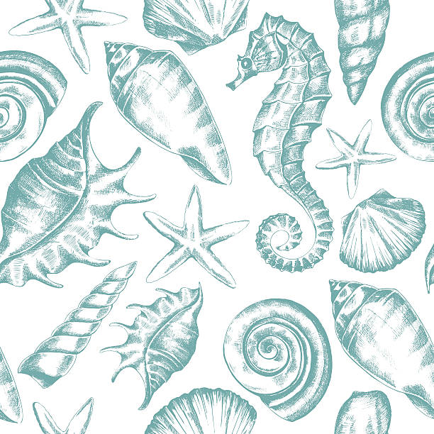 seamless pattern seamless pattern with seashells, starfish and seahorse sketch in retro style, vector Stock sea horse stock illustrations