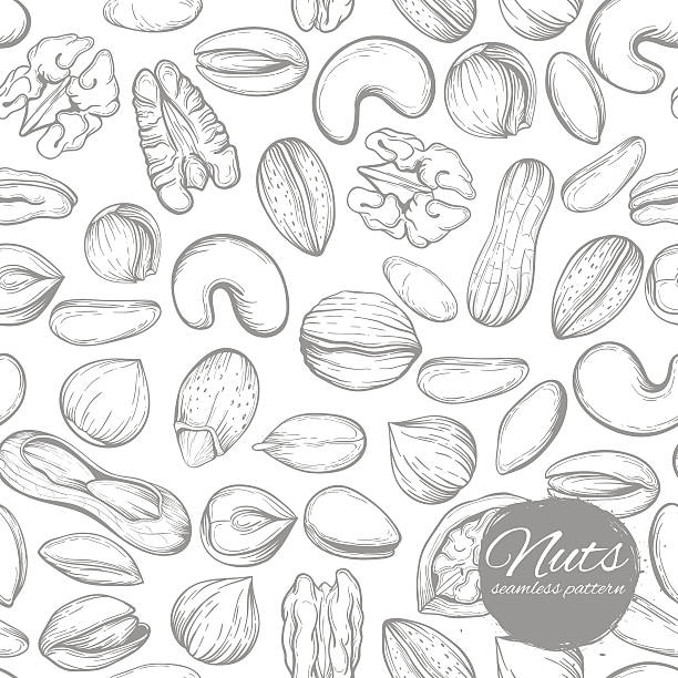 연속무늬  - nuts stock illustrations