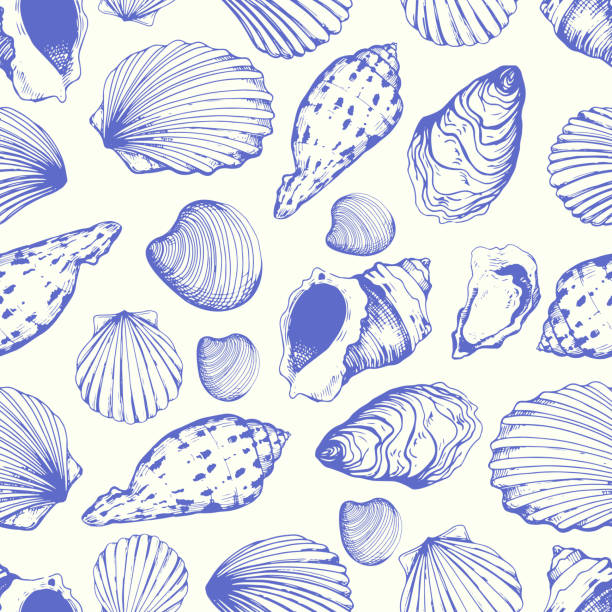 Seamless pattern. Vector Illustration of hand drawn seashells in sketch style on white background. Beach design. Seamless pattern. Vector Illustration of hand drawn seashells in sketch style on white background. Beach design. animal shell stock illustrations