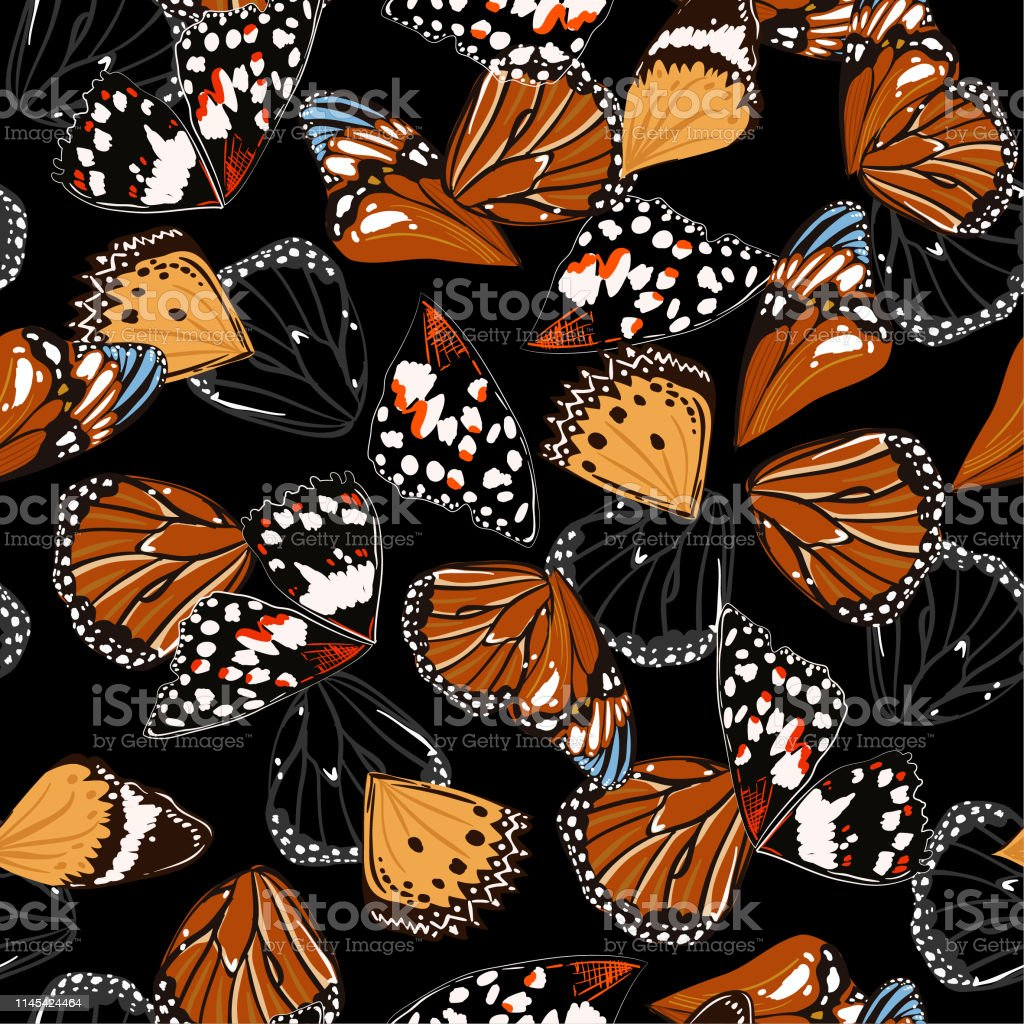 Seamless Pattern Vector Of Butterfly Wings With Color Contrast With Black Background Stock Illustration Download Image Now Istock