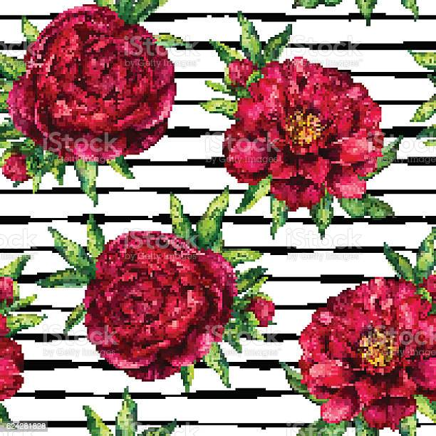 Seamless pattern watercolor flower peony marsala on black striped vector id624281828?b=1&k=6&m=624281828&s=612x612&h=b2vq tiahovjs2ab c7eww2tiegt4gkaa6nxe3sxh0m=