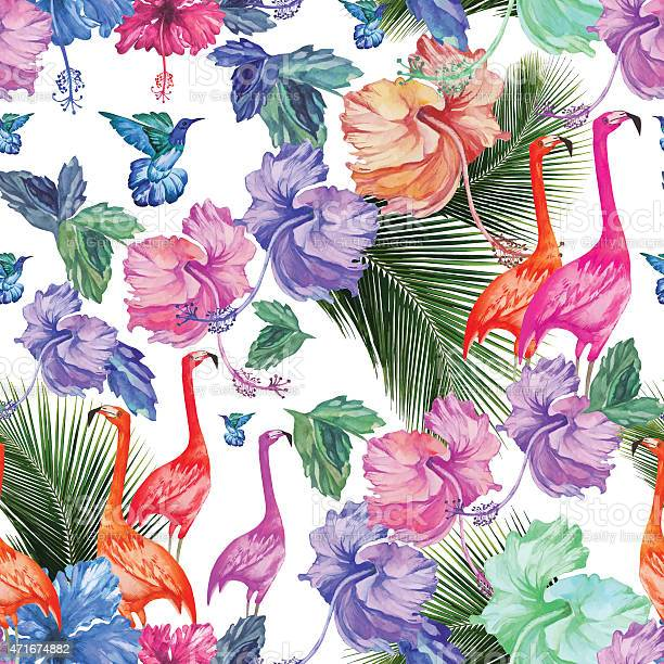Seamless pattern watercolor tropical flowers palm tree and birds vector id471674882?b=1&k=6&m=471674882&s=612x612&h=unvt9ja7 aazwfrygr1nflammre1vhs kuvrjuothea=