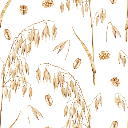 Seamless pattern with a branch of ripe barley and oat flakes on a white background. Harvest of cereals. Organic products. Oatmeal nutrition. Vegetarian oat milk. Healthy natural food.