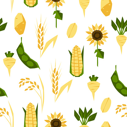 Seamless pattern with agricultural crops. Harvesting background.