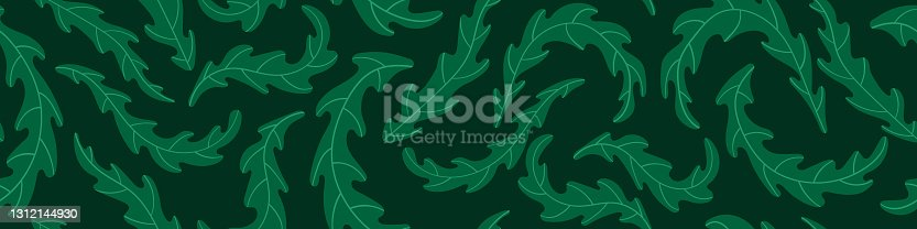 istock Seamless pattern with arugula leaves 1312144930