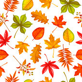 Seamless pattern with autumn leaves