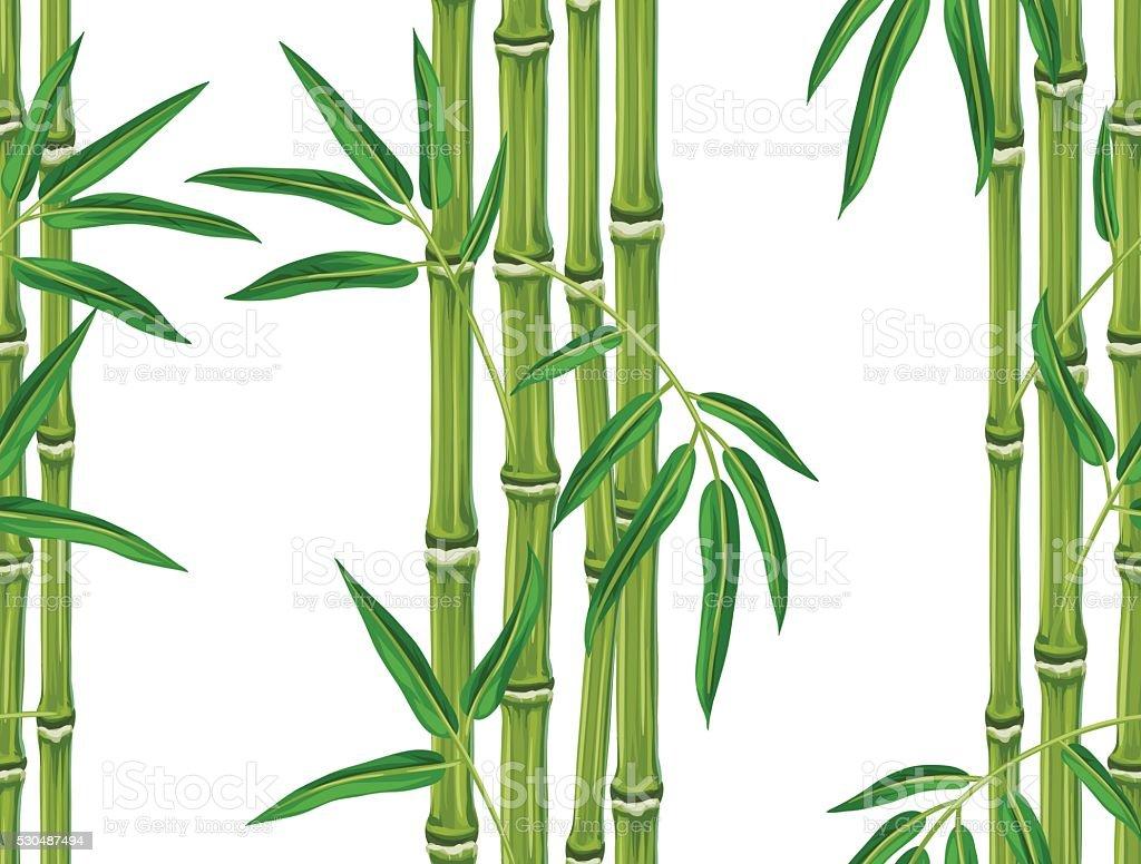 Nahtlose Musterung Mit Bambuspflanzen Und Blatter Hintergrund Ohne