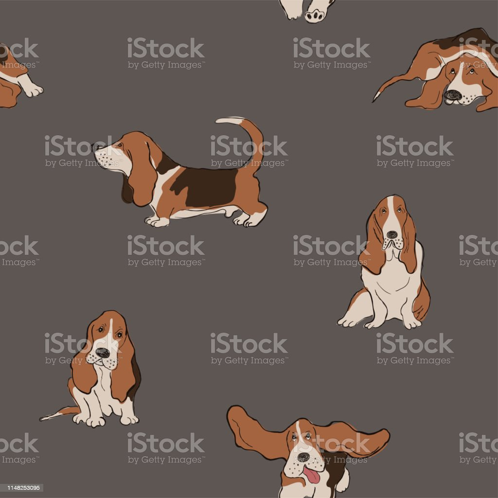 Seamless Pattern With Basset Hound Dog Stock Illustration Download Image Now Istock