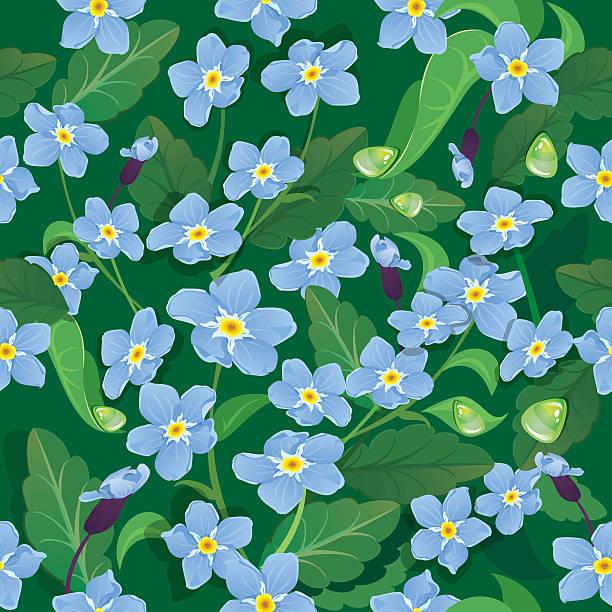 ilustrações de stock, clip art, desenhos animados e ícones de bonito sem costura padrão com flores-não esquecer-me - lian empty