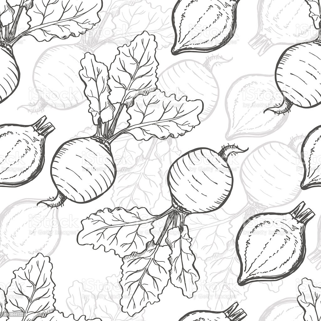 Seamless pattern with beets. Vector illustration for your design vector art illustration