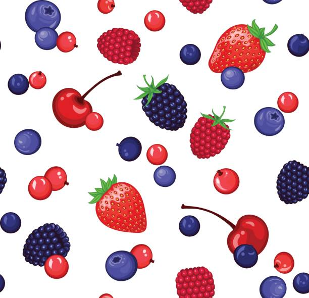 seamless pattern with berries seamless pattern with berries black currant stock illustrations