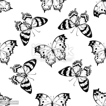istock Seamless pattern with black and white alcides agathyrsus, forest mother-of-pearl 1264580444