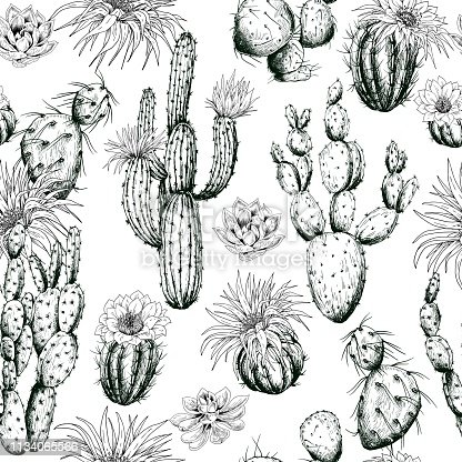 istock Seamless pattern with black and white cactus plants and flowers. 1134065566