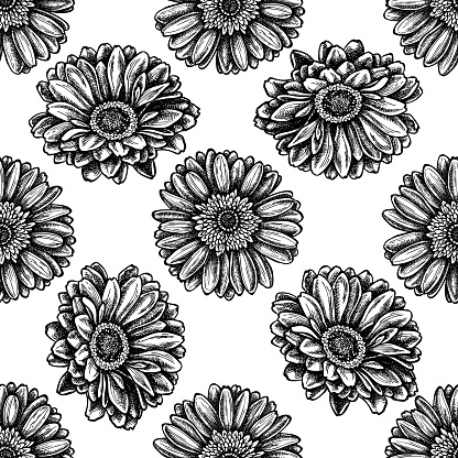 Seamless pattern with black and white gerbera