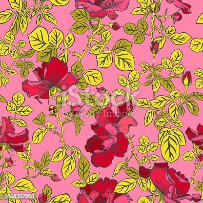 istock Seamless pattern with blossom red roses and leaves. Decorative summer floral background isolated on pink. Beautiful botanical ornament. Line drawing, Vintage style. 1268307503