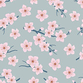 Seamless pattern with blossoming branches of cherry. A tree branch with pink flowers and buds on a blue background. Spring floral background. Vector illustration