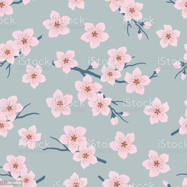 Seamless pattern with blossoming branches of cherry vector id1128538956?b=1&k=6&m=1128538956&s=612x612&h=hauxrvn6 yylky5hbcr40y413vtk vvbv0uyjpekcdy=