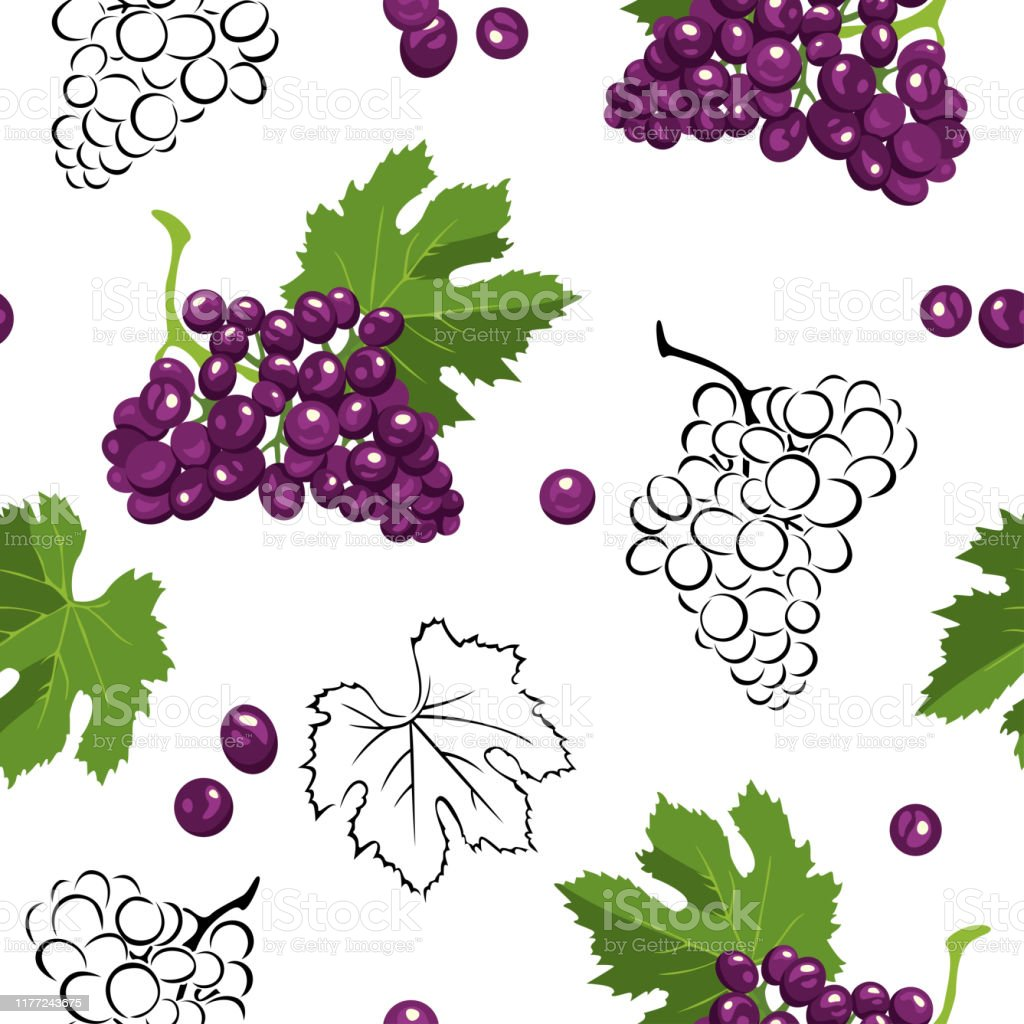 Seamless Pattern With Bunches Of Dark Grapes Green Leaves And Blackwhite Outline On White Background Vector Illustration Of Branches Of Fresh Berries In Cartoon Simple Flat Style Stock Illustration Download Image