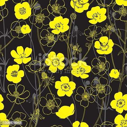 Buttercups. Flowering wildflowers. Vector illustration. Nature background.