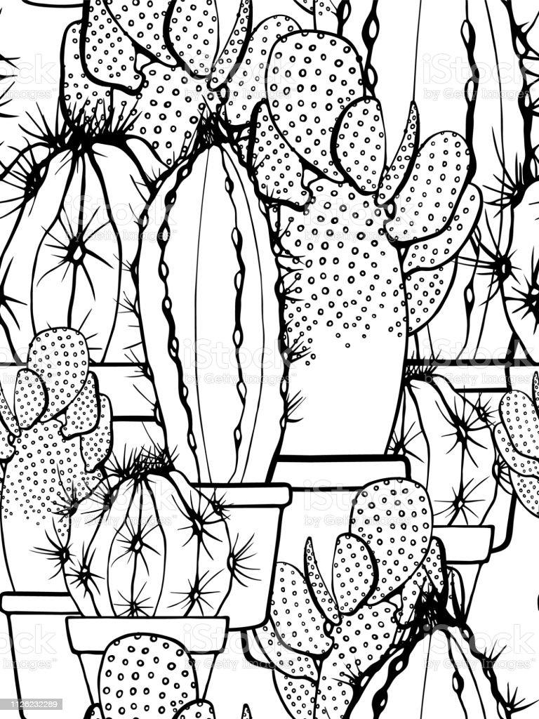 Modèle Sans Couture Avec Cactus Dessin Au Trait Avec Une