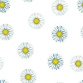 Seamless pattern with camomile. Floral textile. Fabric blue colors.