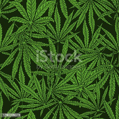 istock Seamless pattern with cannabis leaves. For poster,card, banner, flyer. Vector illustration 1290206073