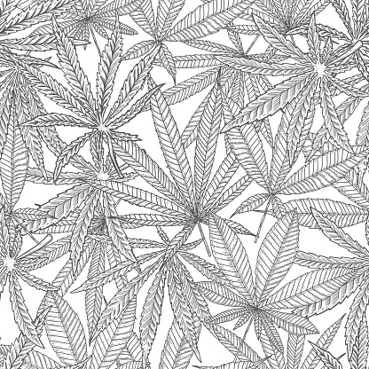 Seamless pattern with cannabis leaves. For poster,card, banner, flyer. Vector illustration