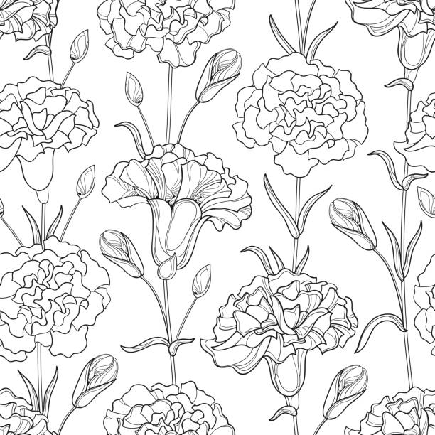 Seamless pattern with Carnation flowers, bud and leaves on the white background. Vector seamless pattern with outline Carnation or Clove flowers, bud and leaves in black on the white background. Elegance floral background in contour style for spring design and coloring book. coloring book pages templates stock illustrations