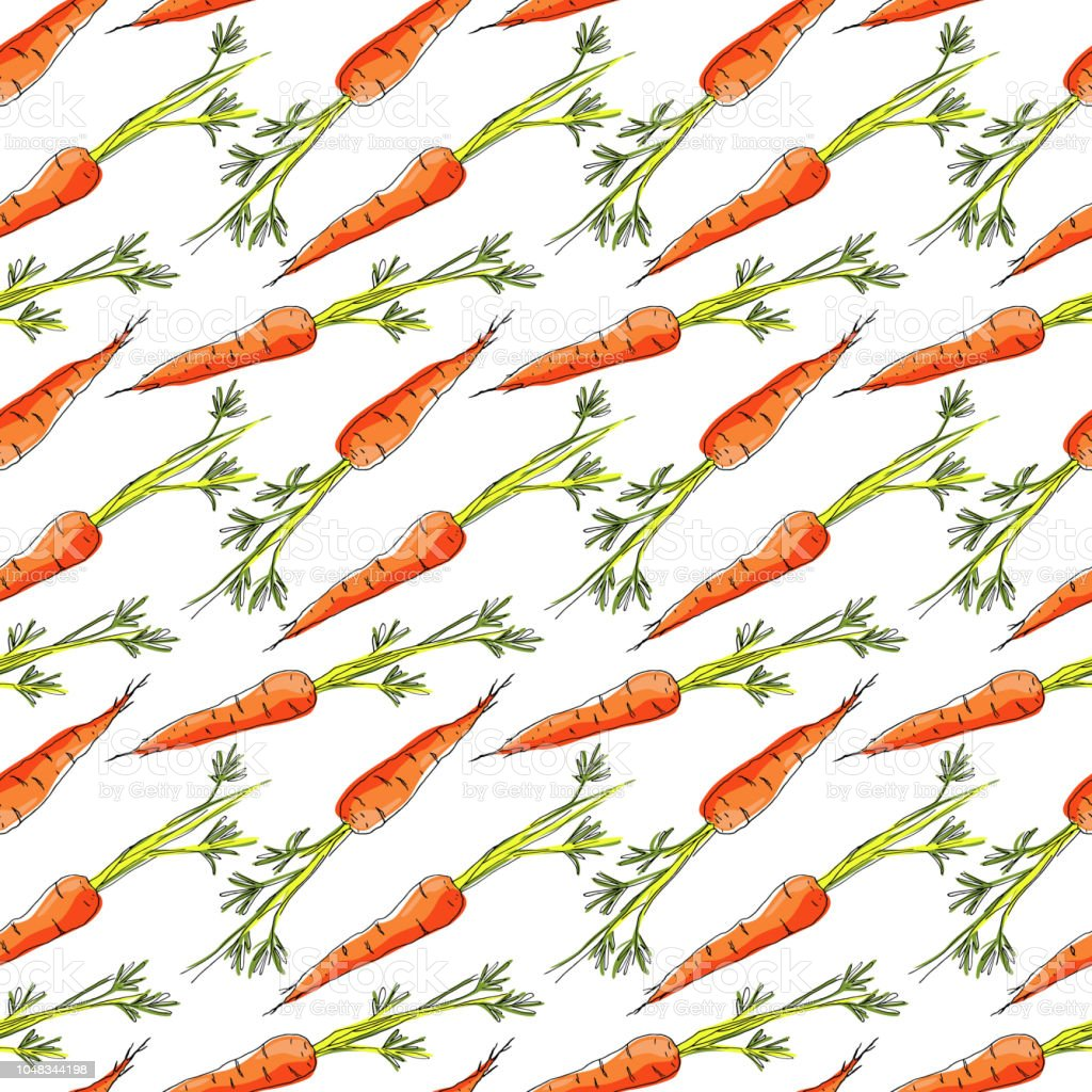 Seamless pattern with carrots on white background. Vector...