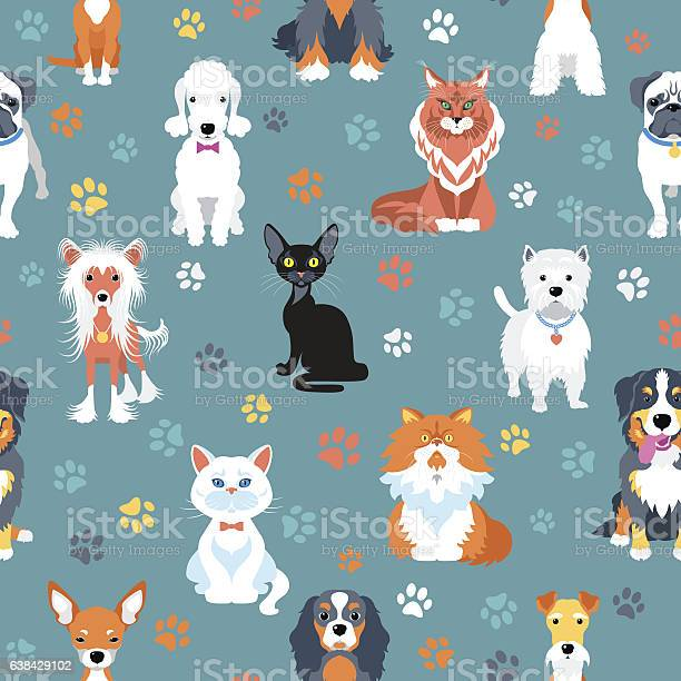 Seamless pattern with cats and dogs flat design vector id638429102?b=1&k=6&m=638429102&s=612x612&h=llrryhqawuue 1a5rvk1ahqo4m3qrckfozasrwmtrko=
