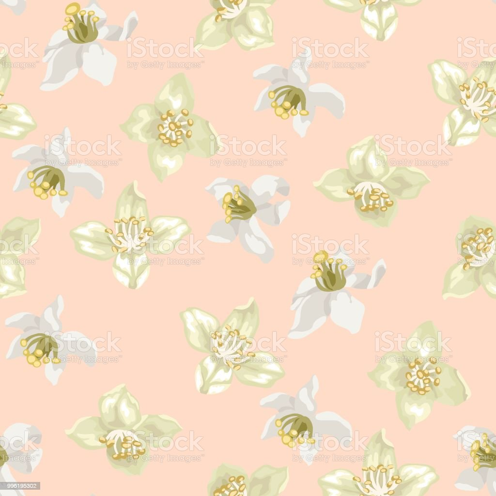 Seamless Pattern With Citrus And Jasmine Flowers Stock Vector Art