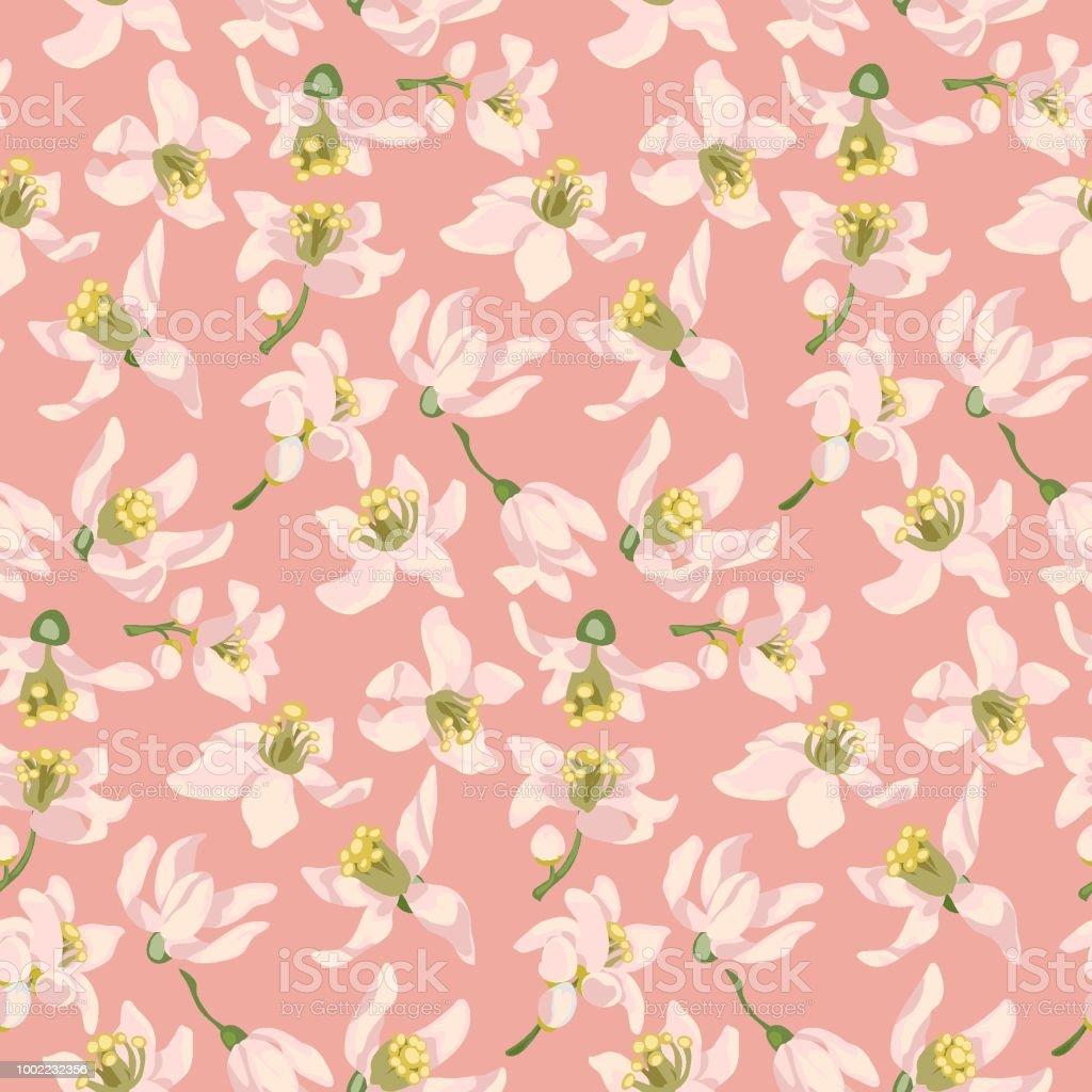 Seamless Pattern With Citrus Tree Flowers Of Different Types Such As