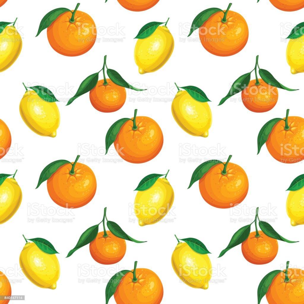 Seamless pattern with citrus vector art illustration
