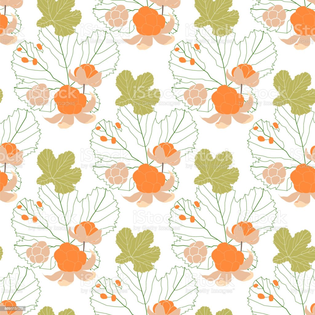Seamless pattern with cloudberry vector art illustration
