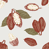 Seamless pattern with hand drawn cocoa beans and branches. Highly detailed vector illustration in vintage style