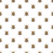 Seamless pattern with Colorado beetle.