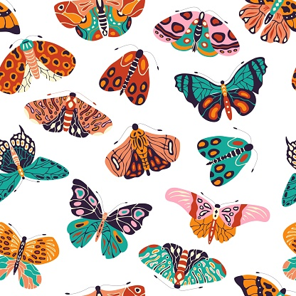 Seamless pattern with colorful hand drawn butterflies and moths on white background. Stylized flying insects, vector illustration.