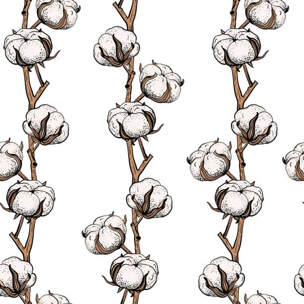 seamless pattern with cotton branches. - cotton stock illustrations, clip art, cartoons, & icons