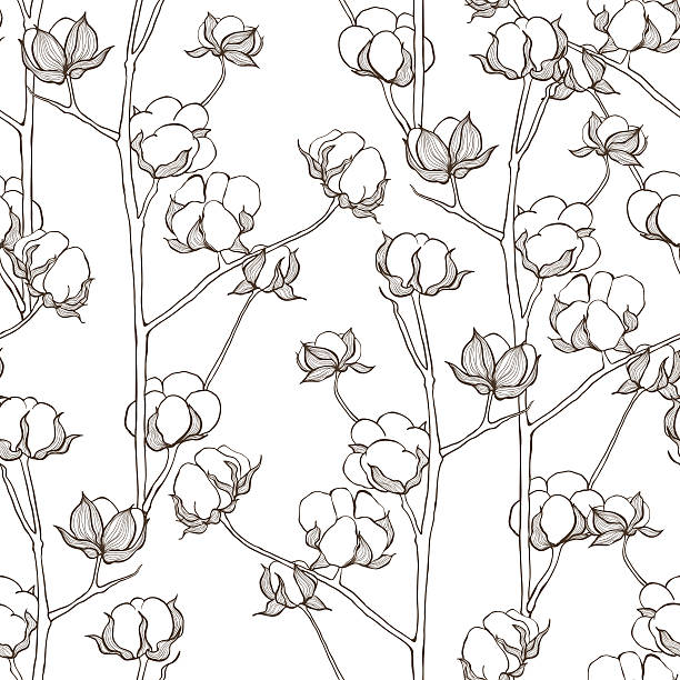 bildbanksillustrationer, clip art samt tecknat material och ikoner med seamless pattern with cotton branches. vector vintage background. - cotton growing