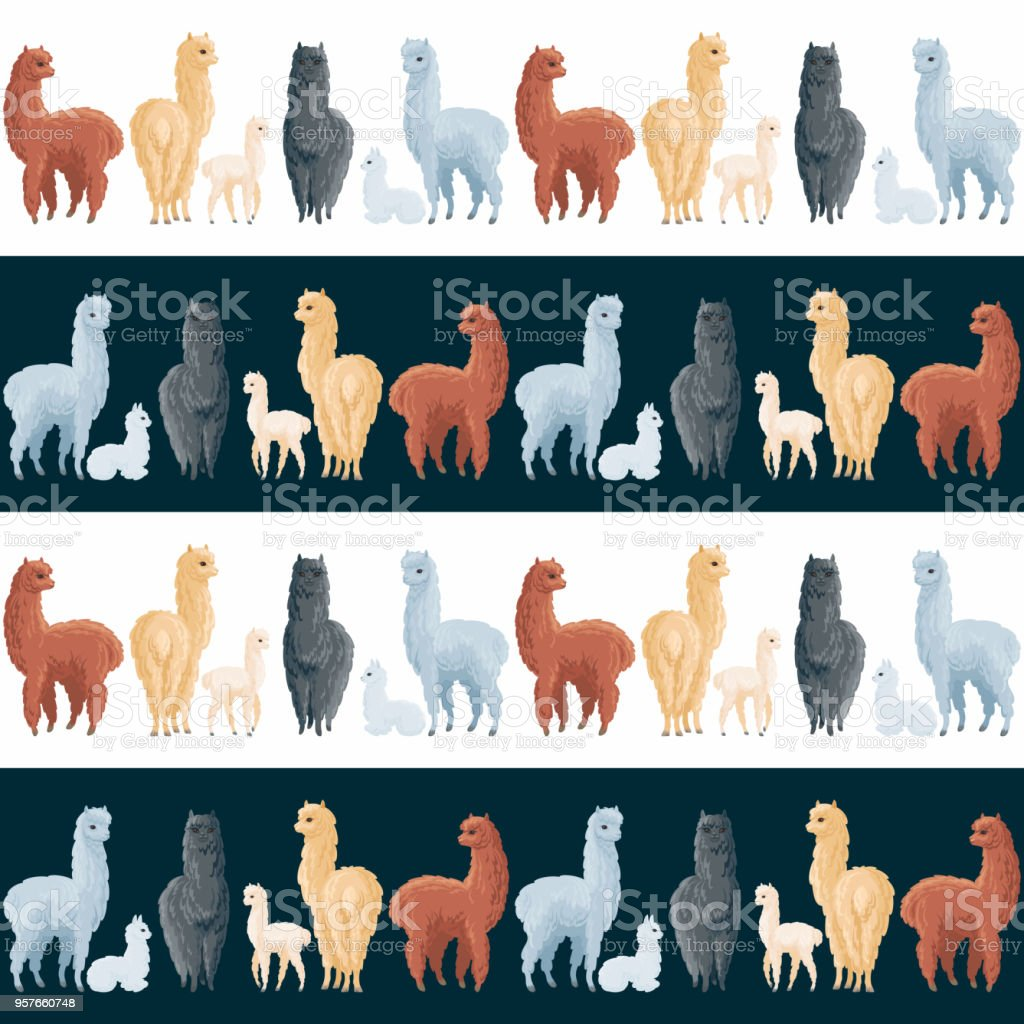 seamless pattern with cute alpacas vector art illustration