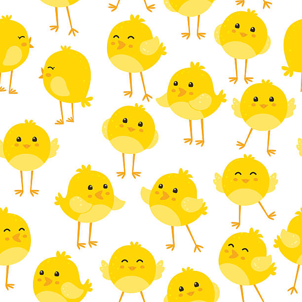 Seamless pattern with cute birds Eps10 file. chicken bird stock illustrations