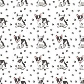 Seamless pattern with cute french bulldog.