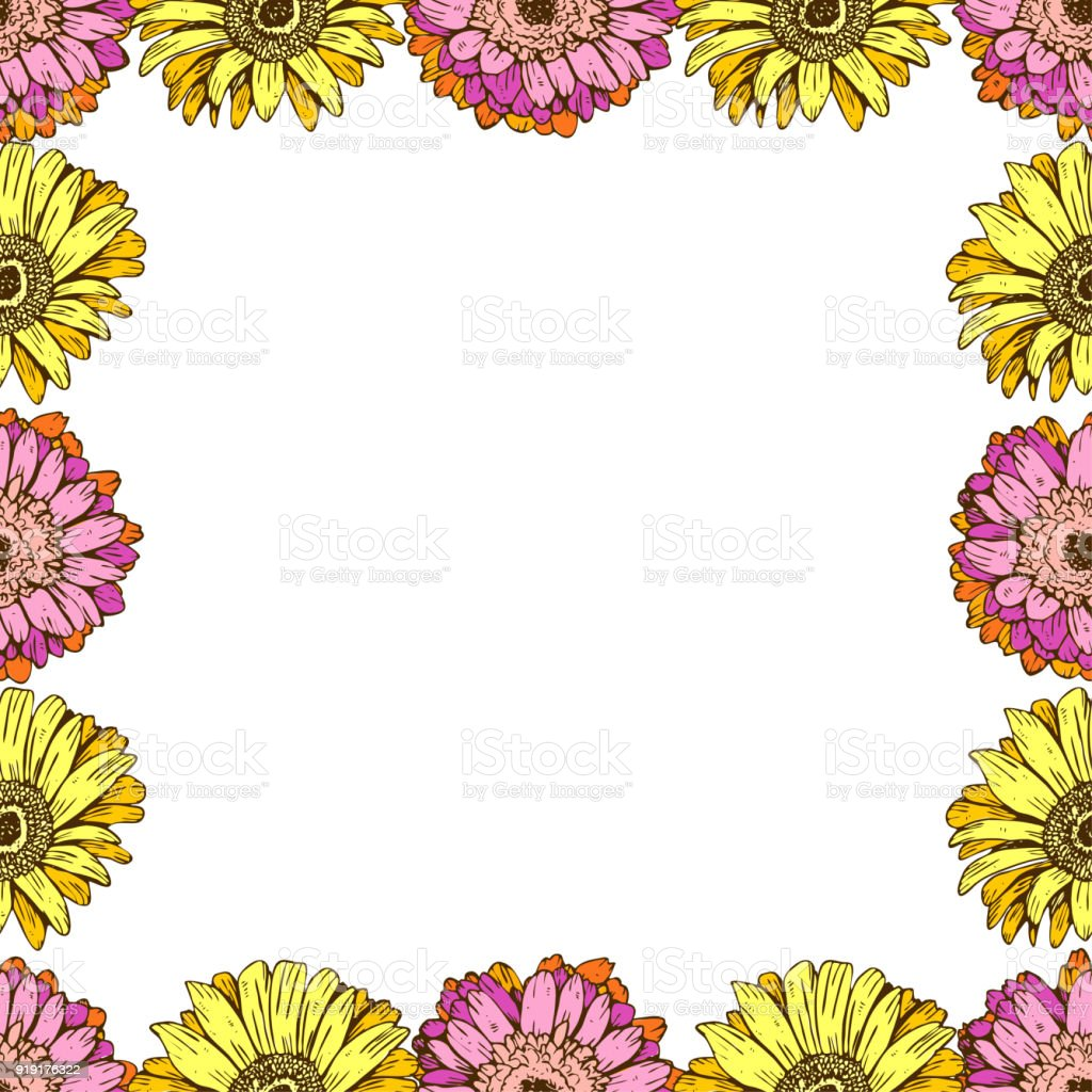 Seamless Pattern With Daisies Flower On White Background Vector Set ...