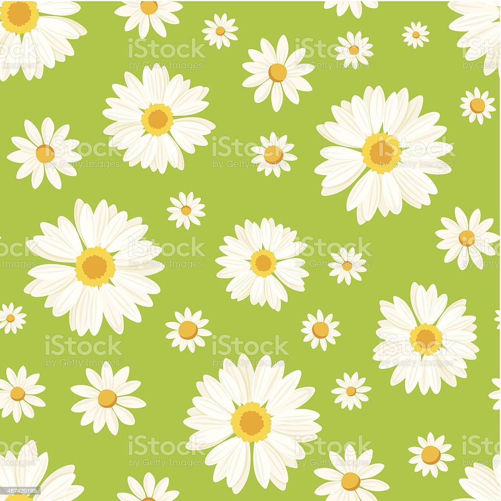 Seamless pattern with daisy flowers on green. Vector illustration. royalty-free stock vector art