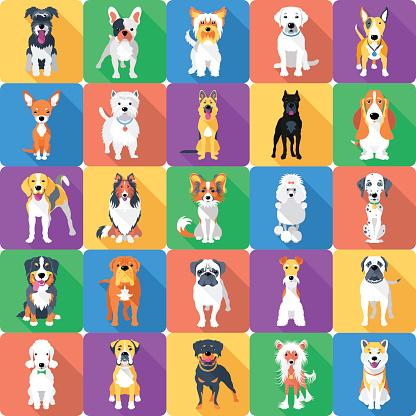 Seamless Pattern With Dogs Flat Design Stockvectorkunst en meer beelden van Achtergrond - Thema