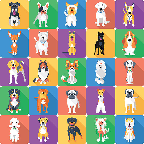 illustrations, cliparts, dessins animés et icônes de motif uniforme avec des chiens à conception - dog