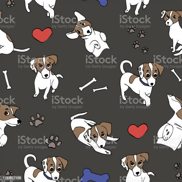 Seamless pattern with dogs jack russell on gray background cute vector id1193927109?b=1&k=6&m=1193927109&s=612x612&h=eqt3xirvnuoyerguoww8mua1rnuyb5tlwrqgeutkijw=