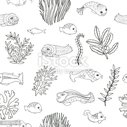 seamless pattern with doodle fish and seaweed coloring page for adults stock vector art 848226546 istock